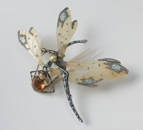 насекомые стрекозы2