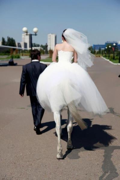 невеста-лошадь