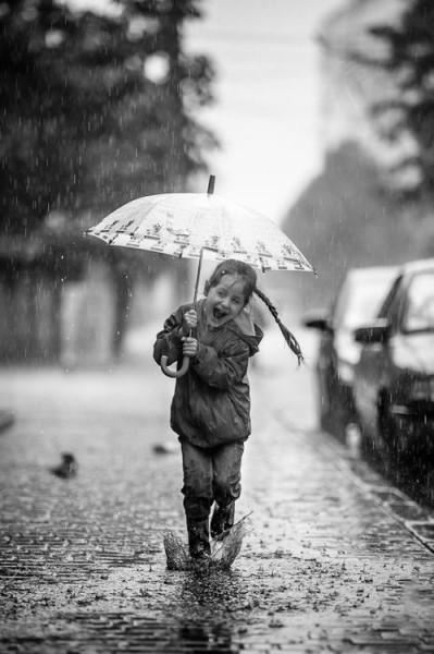 зонты40