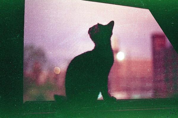 Ночное видение.