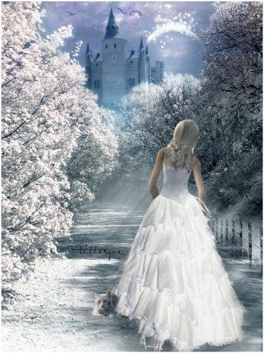 невеста и замок