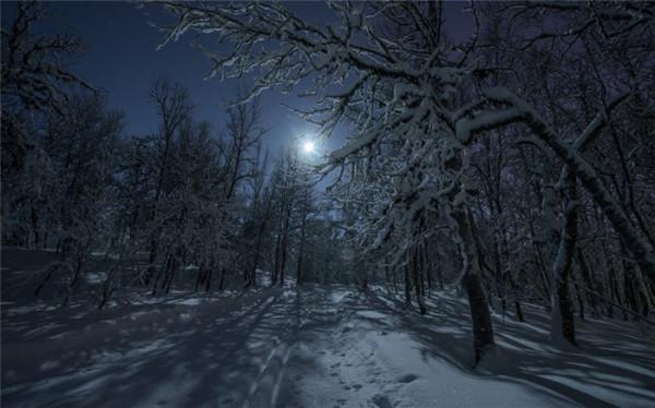 И лунной ночи волщебство...