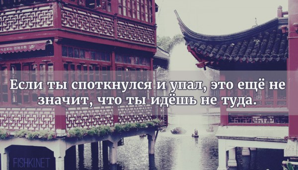 цитата15