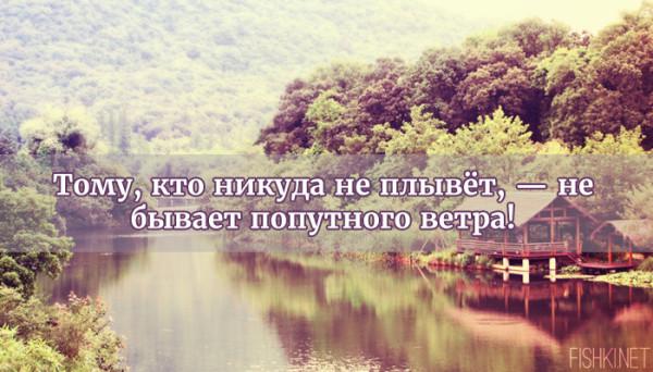 цитата16