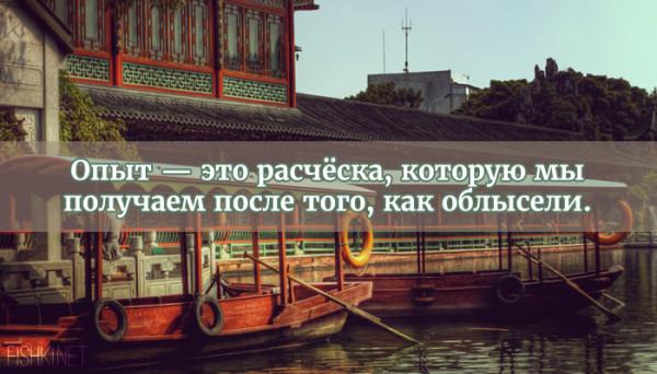 цитата21