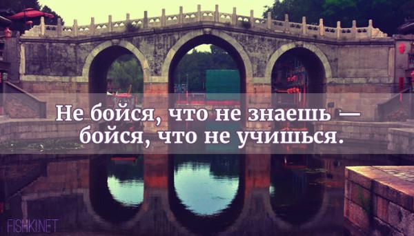 цитата23