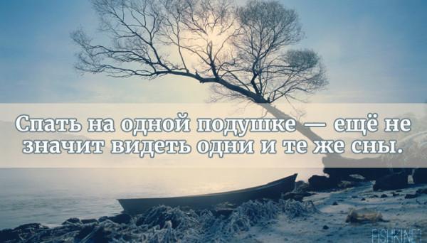 цитата26