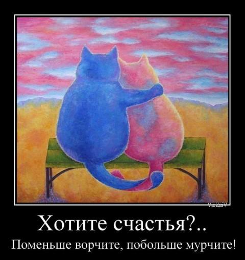 кошки обнялись
