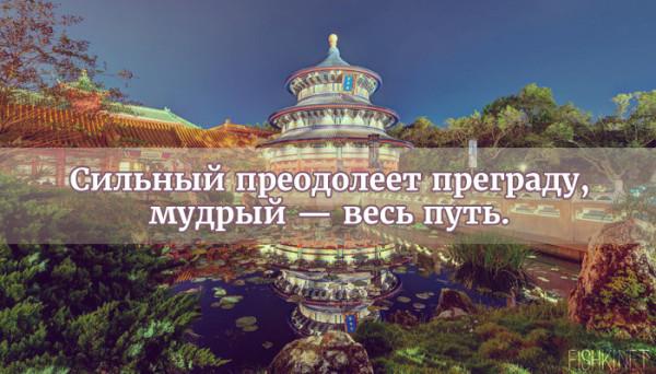 цитата19
