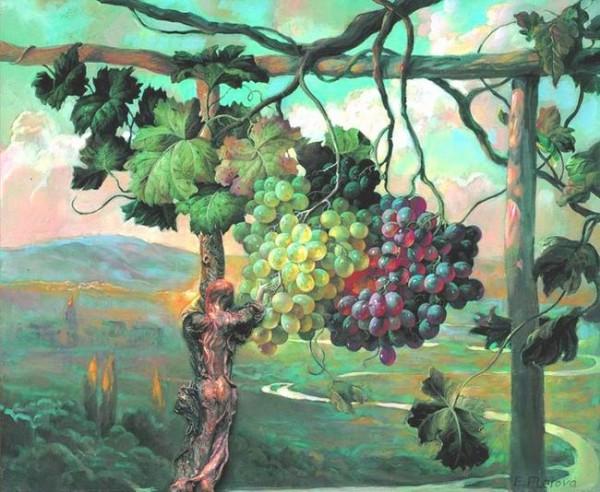 Не созревшая к осени гроздь1