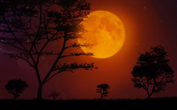 надсмотрщица-луна2