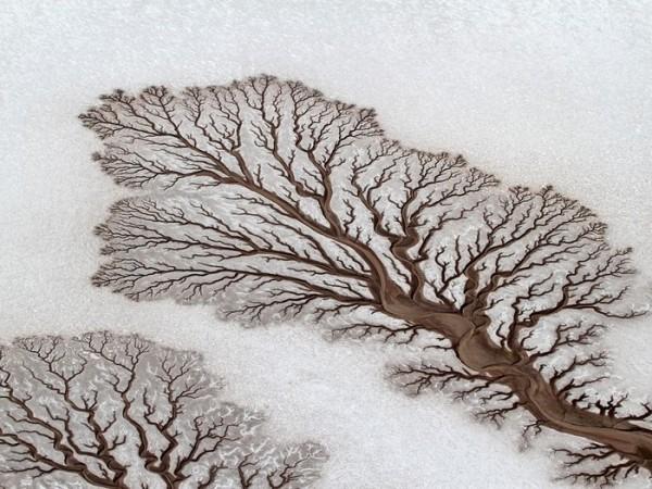 рисунок прилив-отл.потоков в мексик пустыне