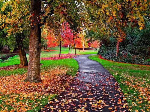 бабье лето - золотая осень