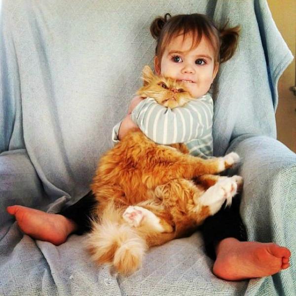 безумная любовь к коту