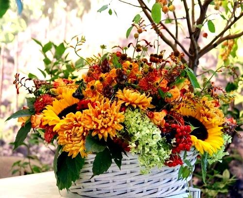 неброские осенние цветы3