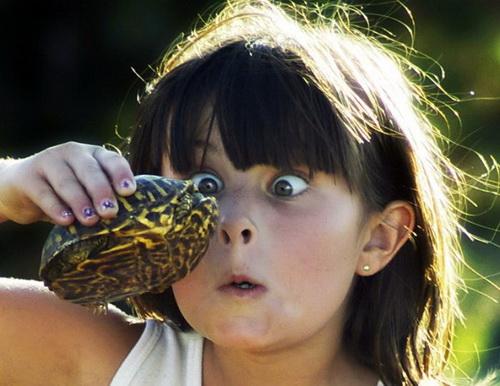 девочка с черепахой