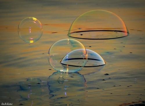 пузыри на луже