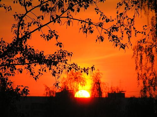 оранжевый закат2
