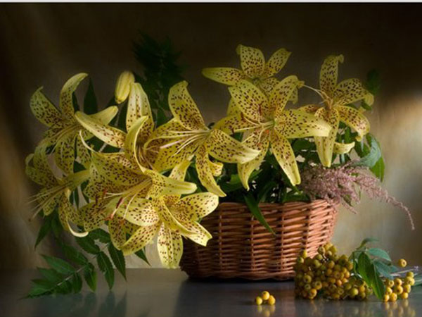 желтые лилии в корзине