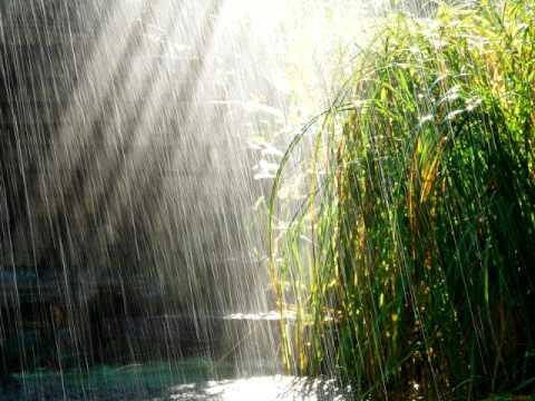 Скучаю по июльскому дождю
