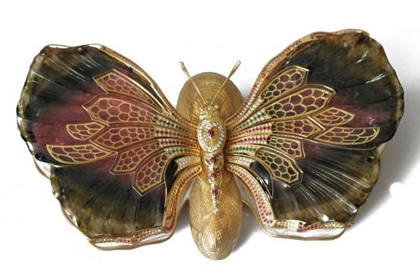 бабочки16