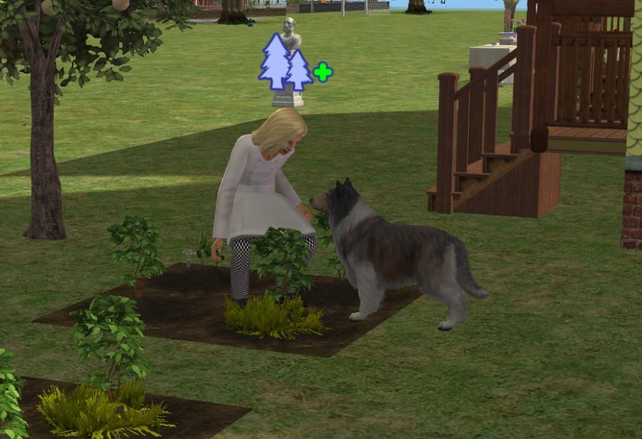6507 Gardening