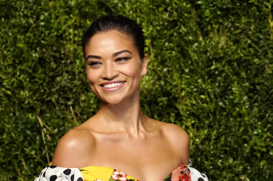 Звезды на CFDA/Vogue Fashion Fund Awards shanina shaik