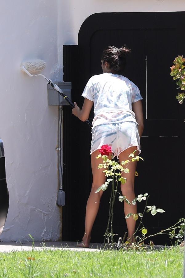 Нина Добрев покрасила свой дом в ЛА