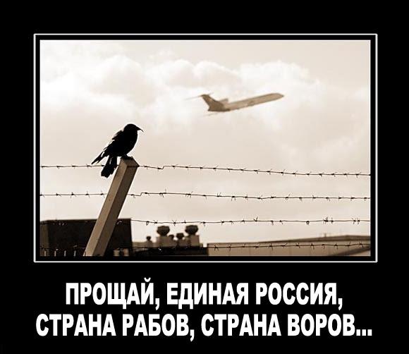 Россиянка попросила статус беженца в Украине при пересечении границы, - погранслужба - Цензор.НЕТ 836