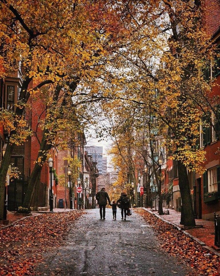 """""""Ты на грусть мою похожа осень"""", Фото: Гугл."""
