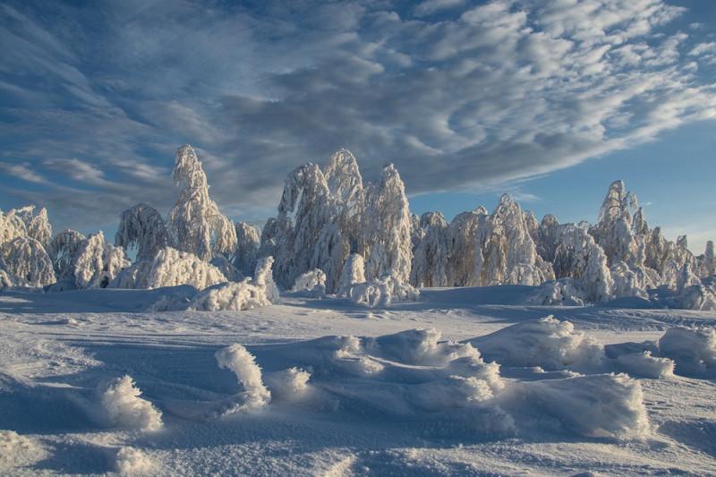 Уральская зима - холодная и величавая. Фото: Гугл.