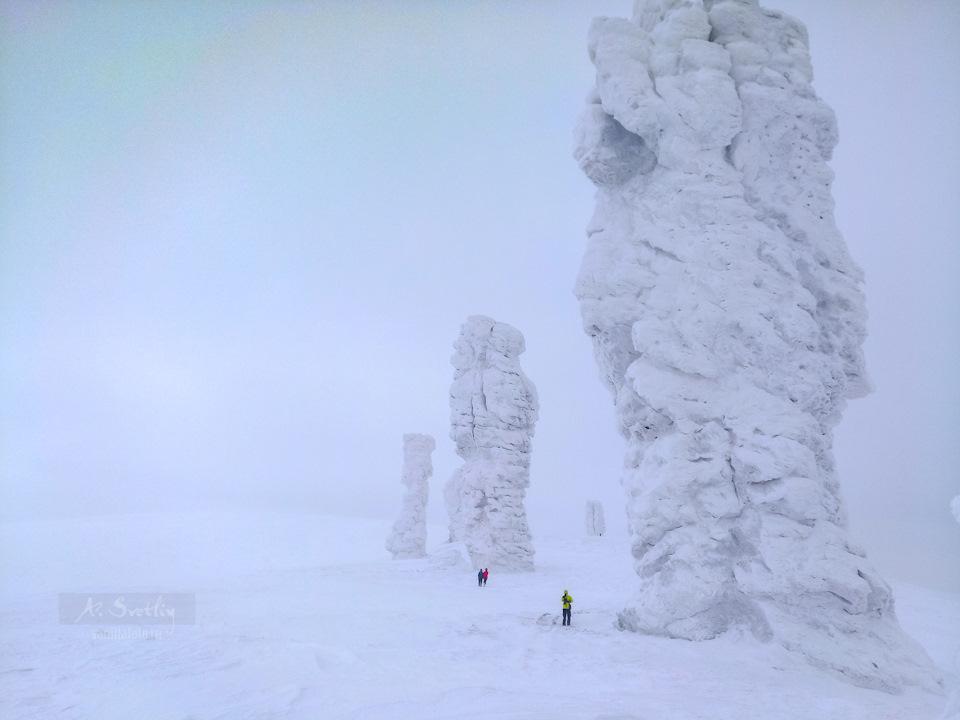Перевал Дятлова, зима. Фото: Гугл.