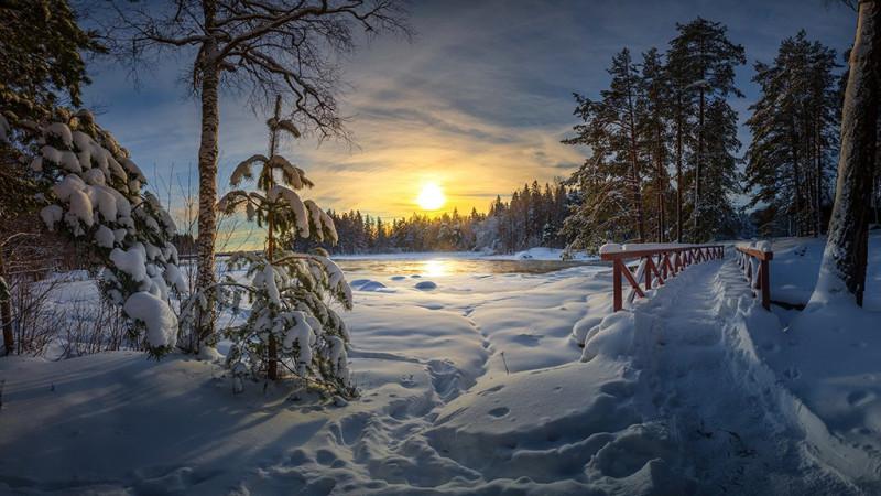 Просто зима - как иллюстративный (и красивый) снимок. Фото: Гугл.