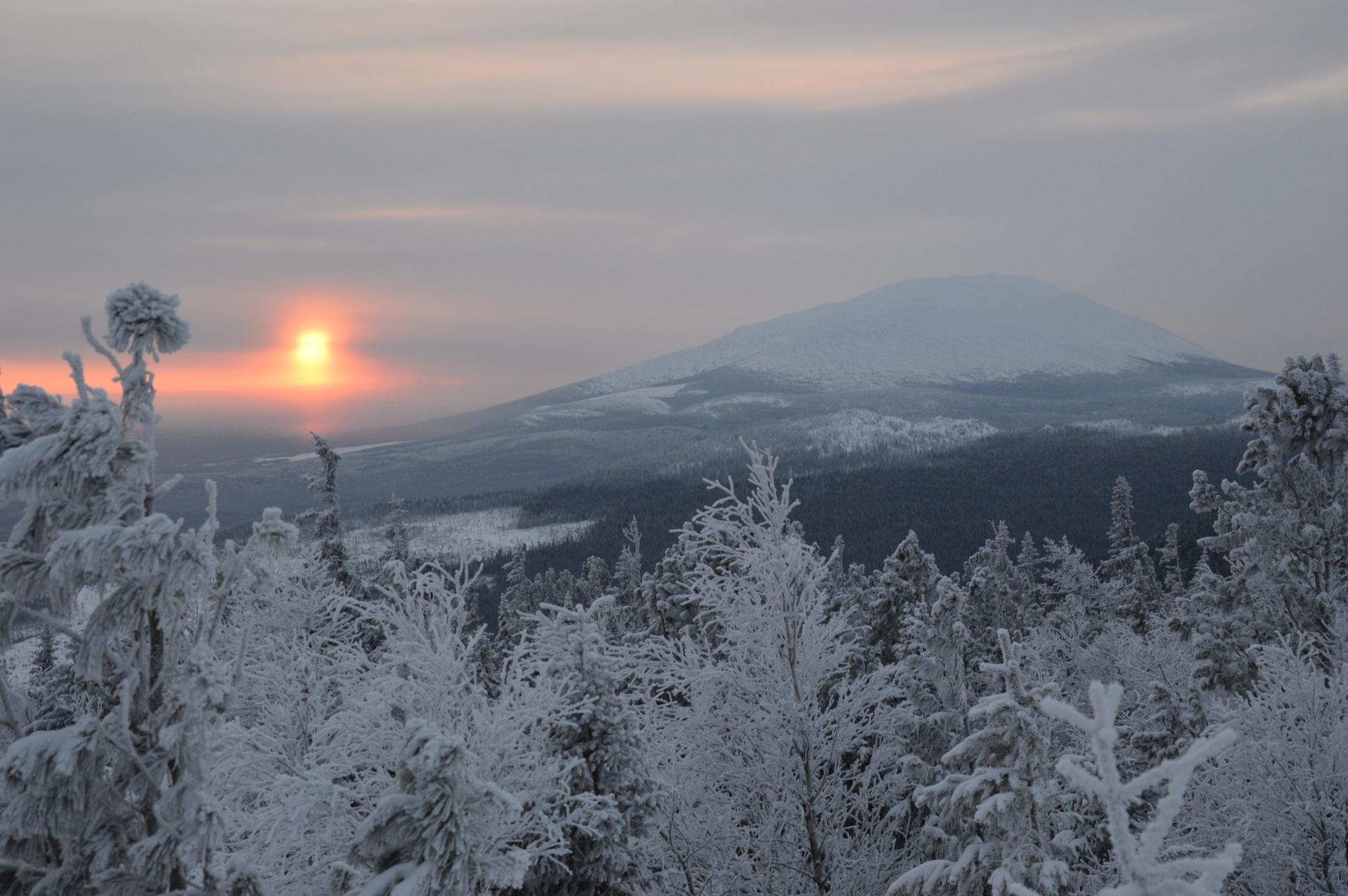 Если Гугл не обманывает, это — Северный Урал. Фото: Гугл.