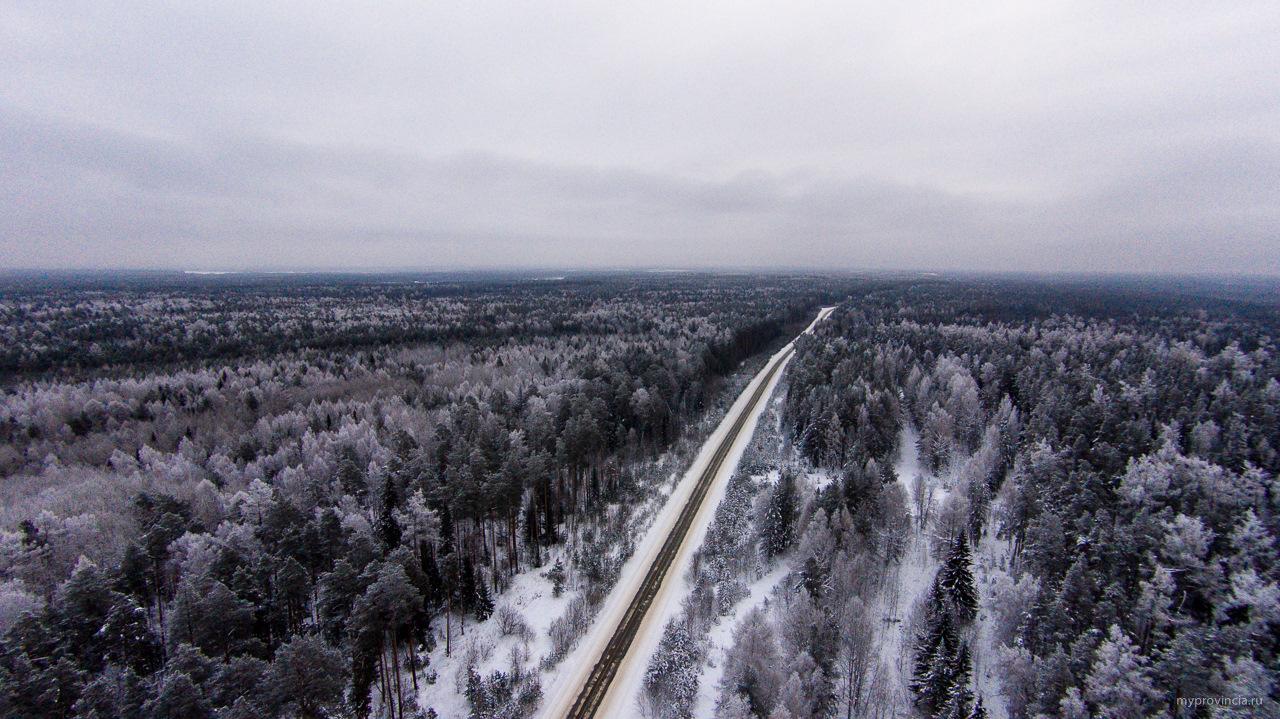 Уральская тайга — она начинается неожиданно. Фото: Гугл.