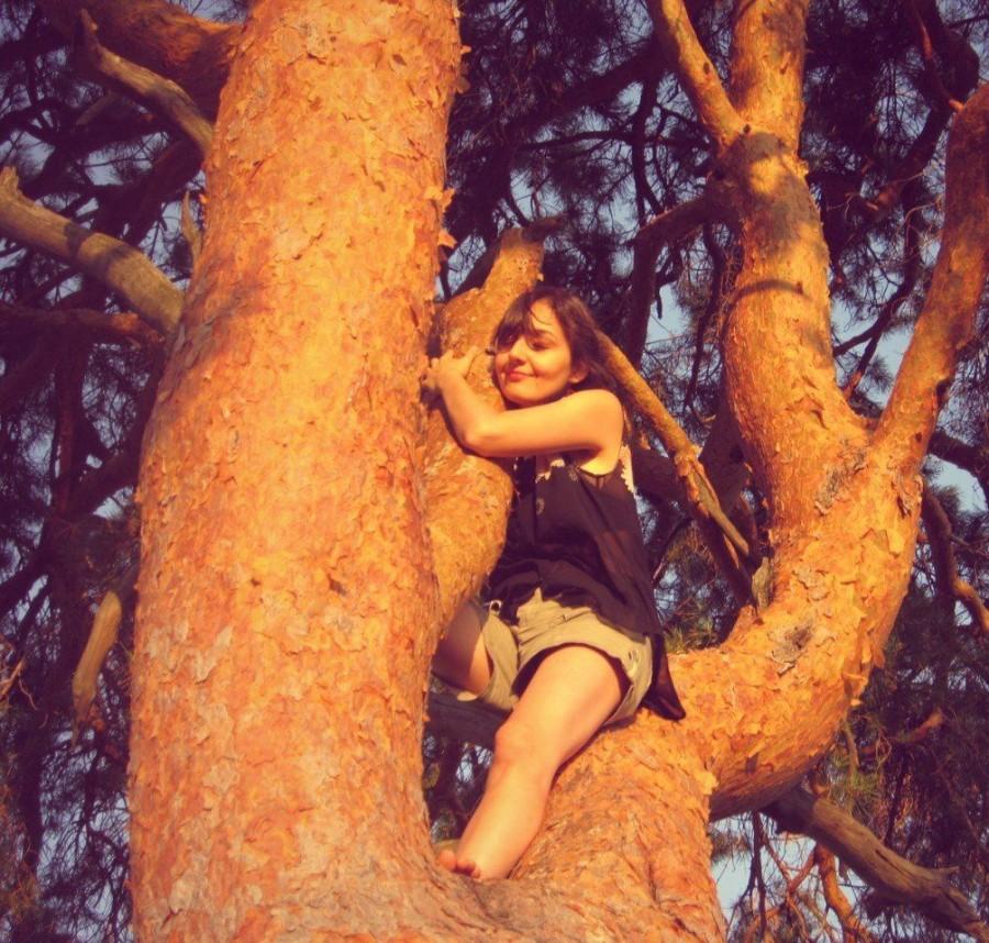Девушка на дереве. Кликабельна )
