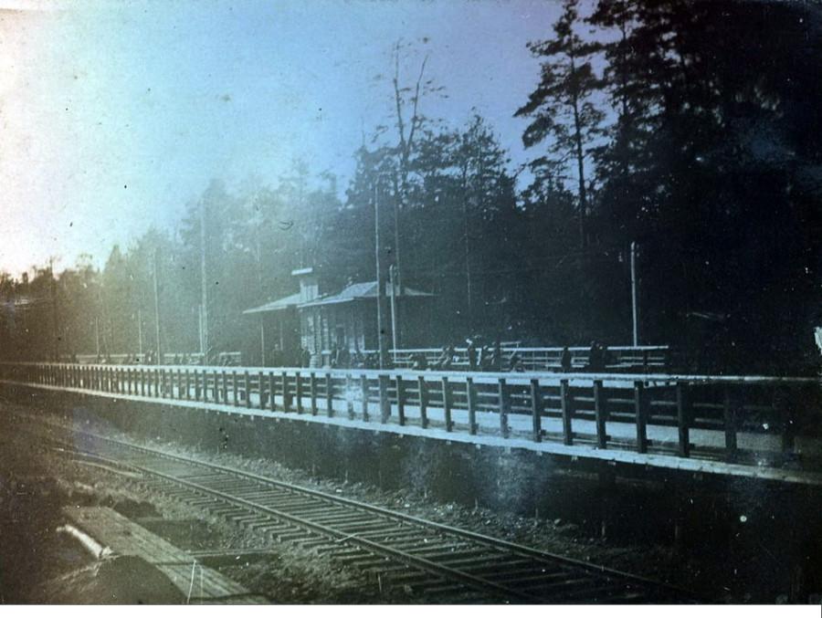 лось 1933 год.jpg