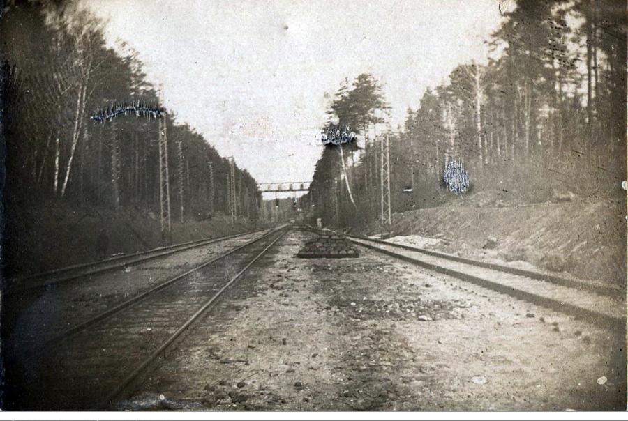 лось 1933.png