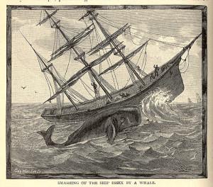 Эссекс китобой