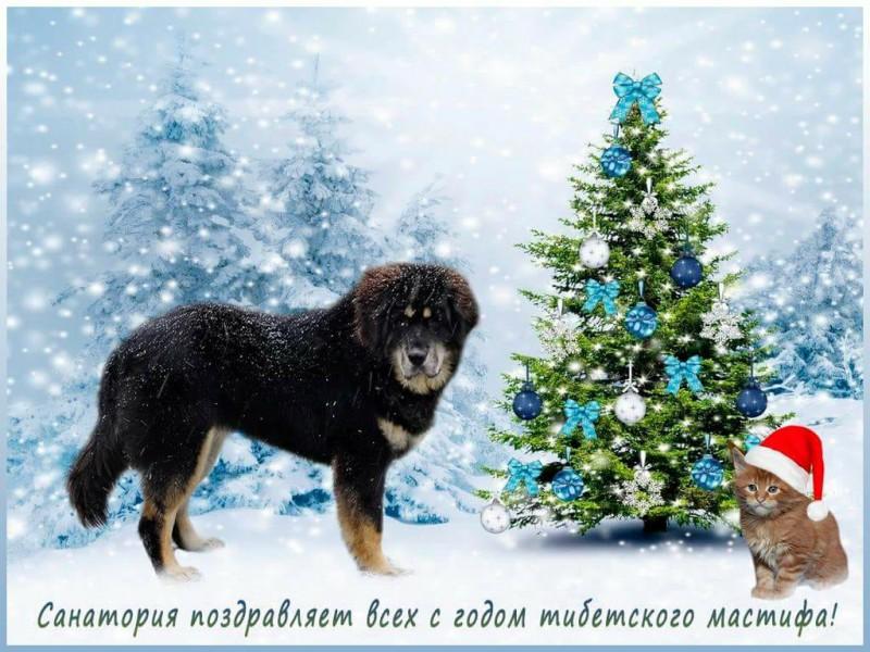 С новым годом )