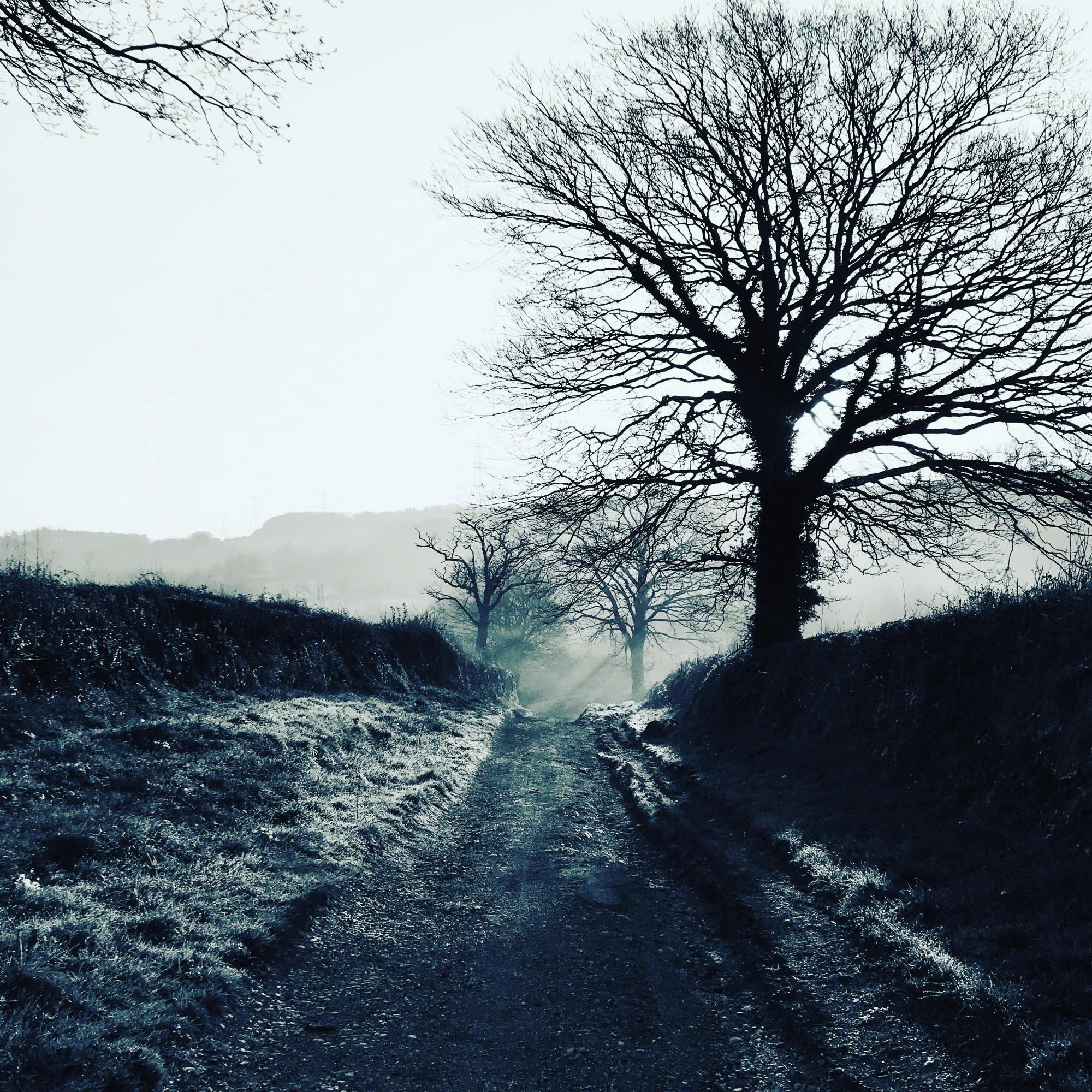 South Brent, Devon, England