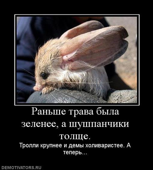 989295_ranshe-trava-byila-zelenee-a-shushpanchiki-tolsche