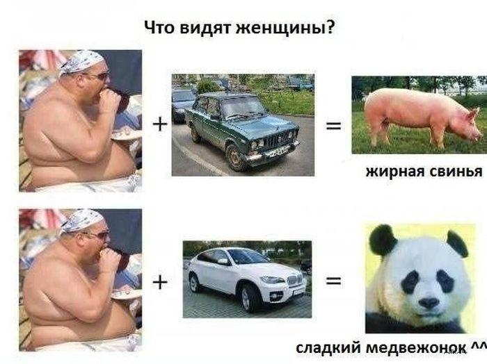 auto_prikoli_17