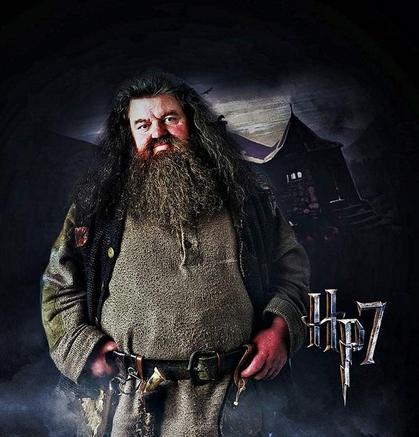 Rubeus-Hagrid-08_2