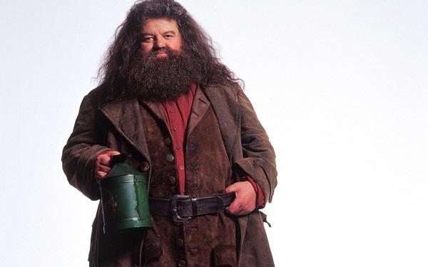 Rubeus-Hagrid-Wallpaper-hogwarts-professors-32796071-1280-8002_2