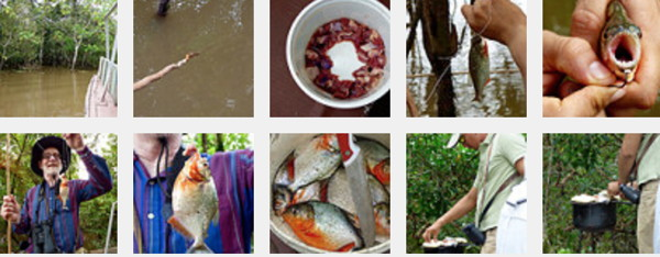 FishingForPirhanasFlickrSet.jpg