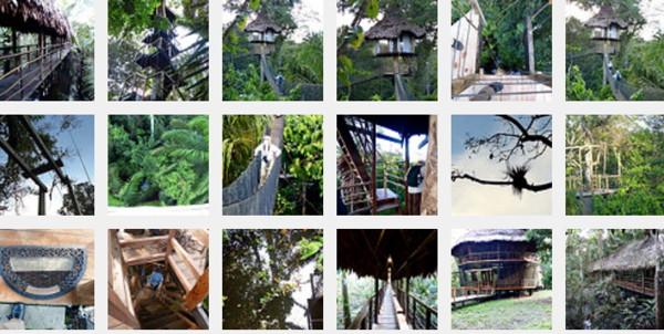 TreeHouseFlickrSet.jpg