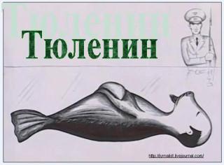 тюленин минское море квн
