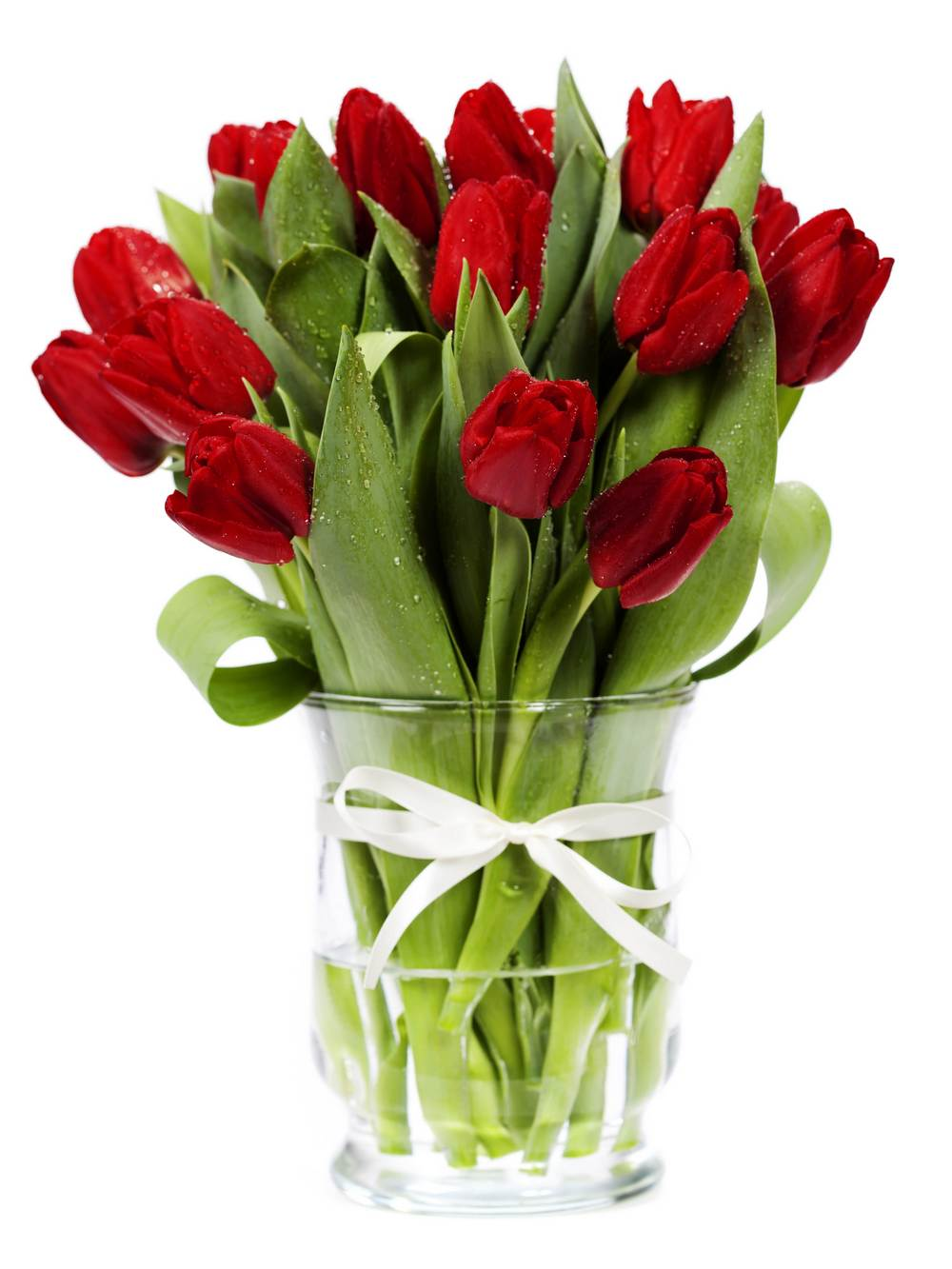 8 марта, тюльпаны