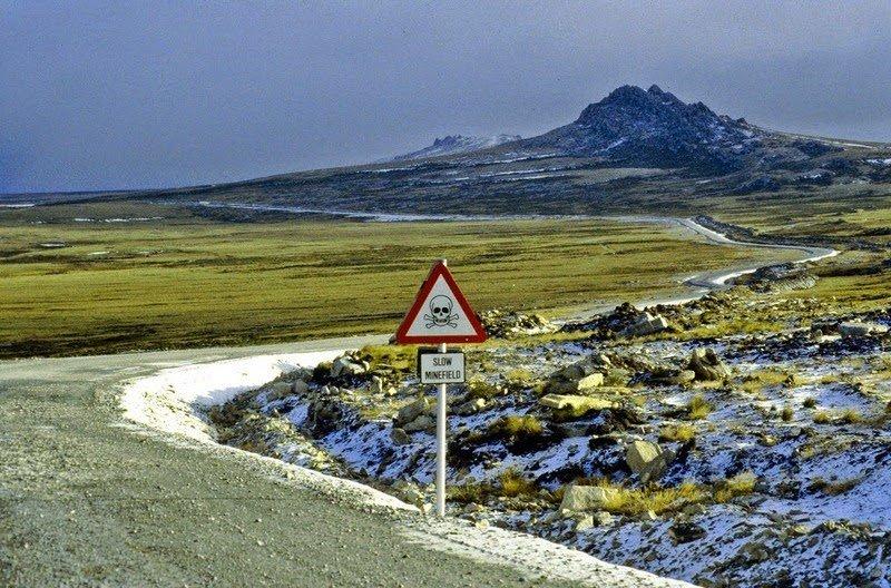 минное поле, пингвины, Фолклендские острова